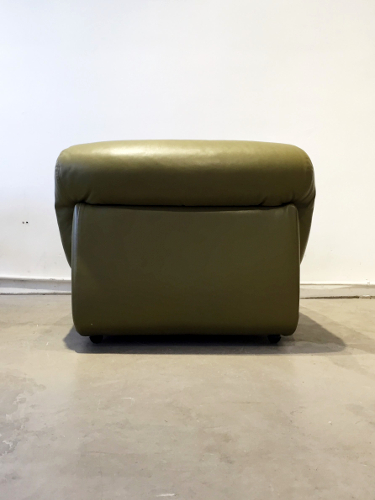 cuir-vert3.jpg